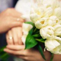 весенний дождь, тюльпаны и любовь :: Марина Варнава