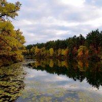 Осень красой отразилась в реке... :: Валентина Данилова