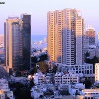 Тель-Авив :: Anna Sokolovsky