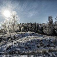 winter morning :: Dmitry Ozersky