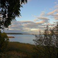 Берег Выборгского залива :: Елена Павлова (Смолова)