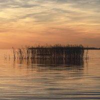 Озеро :: Валентина Ломакина