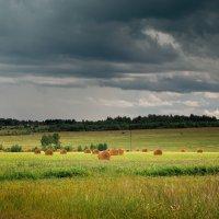 Лето :: Андрей Дорохин