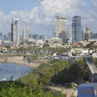 Яффо. Вид на Тель Авив :: Ефим Хашкес