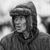 Ух ты-ы! :: Александр Степовой