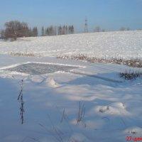 Зимний пруд :: Мила