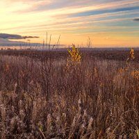 Осенний закат :: Валерий Талашов