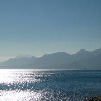 солнце в море :: Натали Акшинцева