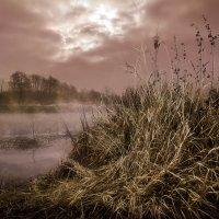 Проблески осеннего утра....3. :: Андрей Войцехов