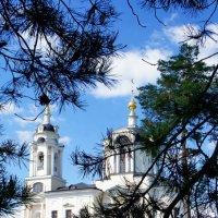 Голубое небо :: Татьяна Белогубцева