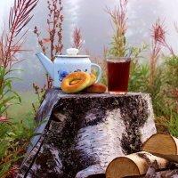 Чай на просеке :: Сергей Чиняев