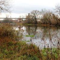 Река Орлик в конце ноября. :: Борис Митрохин