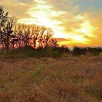 Осенний закат. :: Роберт Хак.....