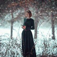 Зимняя Сказка :: Liliya Nazarova