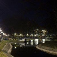 Ночной парк :: Светлана -