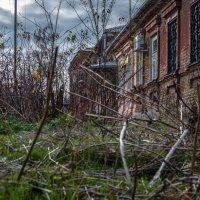 Осенний хаос :: Константин Бобинский