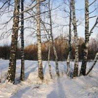 Я по первому снегу бреду... :: Галина Кан