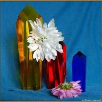 Цветы и кристаллы-1 :: Андрей Заломленков
