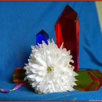 Цветы и кристаллы-4 :: Андрей Заломленков