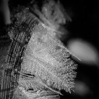 Морозный хрусталь :: Анатолий Piligrim54 Крюков