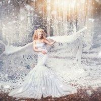 angel :: Anna Schmidt