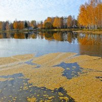 Листопад у озера :: Miola