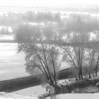 Русская зима из окна автобуса во время движения :: Владимир Максимов