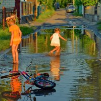 Валентина Данилова - Лисапет отдохни  здесь такая лужа :: Фотоконкурс Epson