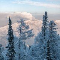 Зима на красноярских столбах :: Александр Решетников
