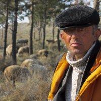Суровый пастух :: Алексей Окунеев