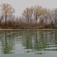 Осенние берега..Ноябрь.. :: евгения