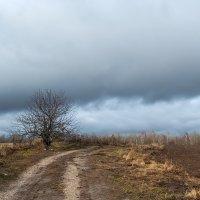 ...ноябрь... :: Андрей Гр