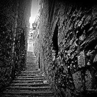 Меж старых стен... :: Dmitry Chudnovsky