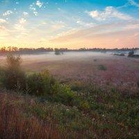 Утром :: Николай Алехин