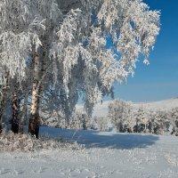 Зима в России :: Николай Привалов