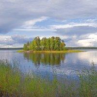 На берегу бухты Защитной,вид на Выборгский залив :: Сергей Зыков