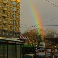 Радуга в городе! :: Ирина Олехнович