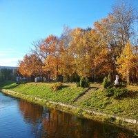 Парк в осеннем убранстве :: Лидия (naum.lidiya)