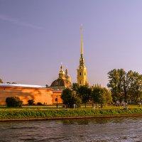Летний вечер над Петропавловкой :: Владимир Демчишин