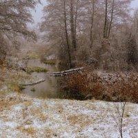 первый снегопад :: Александр Прокудин
