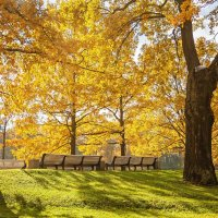 Теплый октябрь :: Табаско Перчик