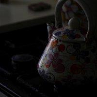чайник :: павел