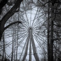 Осень в парке :: Дмитрий Кузнецов