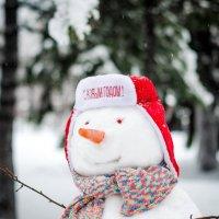 Снеговик :: Юлия