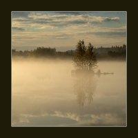 Утренний туман :: shvlad