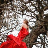 Девушка в красном :: Алена