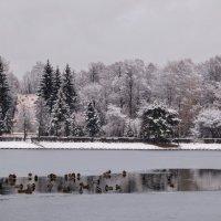 Места для плавания остается мало. :: Larisa Ereshchenko