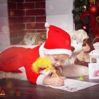 Я верю в чудеса и в Дедушку Мороза :: Ирина Митрофанова студия Мона Лиза