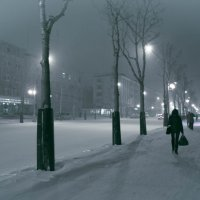 Снежный вечер :: Ilona An
