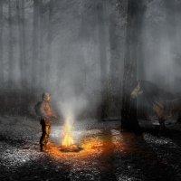 Мрачный лес :: Ломыч lomich